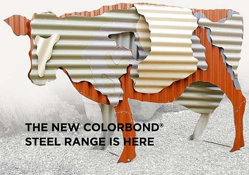 Colorbond Cow